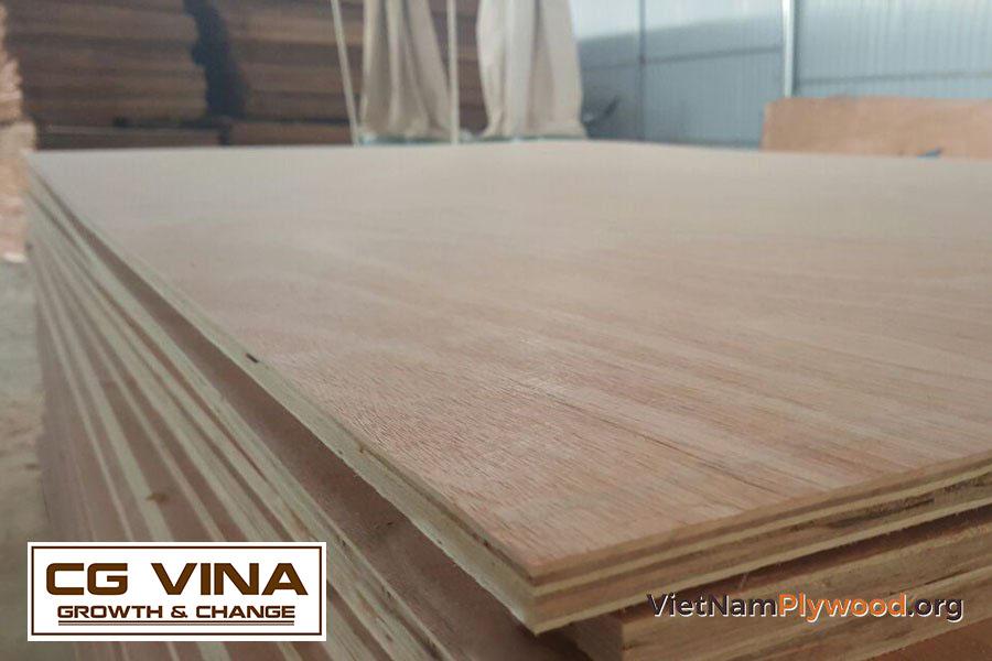Gỗ dán là gì - Những đặc điểm và ứng dụng của gỗ dán
